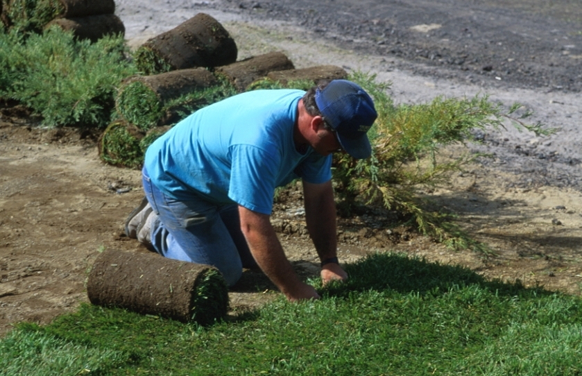 Step by step sod installation instructions stonegate for Care for new sod